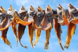 Условия хранения вяленой и сушеной рыбы