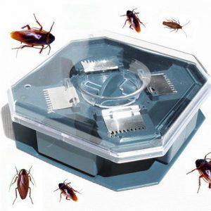 Reusable-Plastic-Non-Toxic-Eco-Blue-Color-font-b-Cockroach-b-font-Bug-Roach-Motel-Catcher