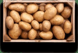 potatobox
